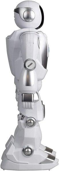 pasūtiet tirdzniecības robotu