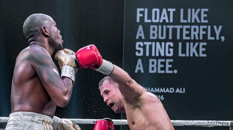 bagāts bokss, kur var nopelnīt naudu