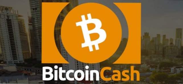 Bitcoin priekšrocības, tyler winklevoss stāsta bill gates kā īss bitcoin